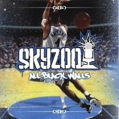 Skyzoo - All Black Walls Lyrics