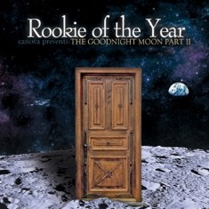 Rookie Of The Year - Save Me Lyrics