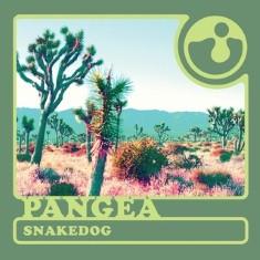Together PANGEA - ing