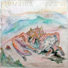 Cumulus - I Never Meant It To Be Like This