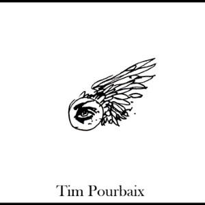 Tim Pourbaix - ing