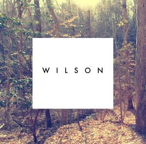Wilson - I'm Somewhere Between Happy & Sad