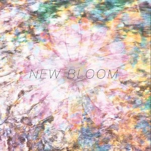 Endless Heights - New Bloom