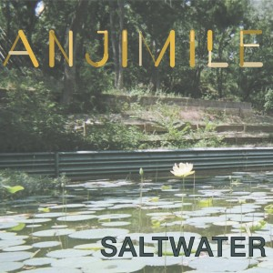 Anjimile - Saltwater