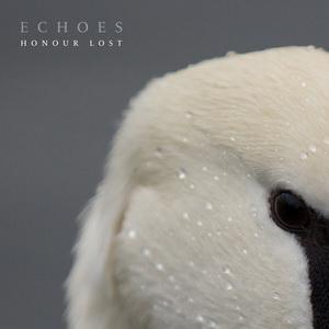 Echoes - THE PURSU
