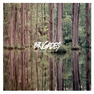 Brigades - Crocodile Tears