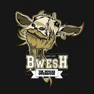 The Wiggar Overdose - BWESH