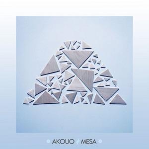 Akouo - Not Enough Lyrics