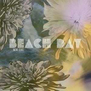 Beach Day - Don't Call Me On The Phone Lyrics