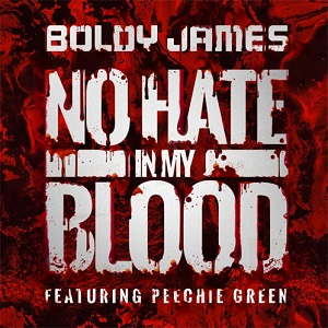 Boldy James - No Hate In My Blood Lyrics (Feat. Peechie Green)
