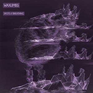 Waxlimbs - ing