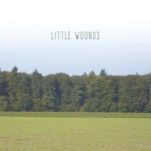 Bobby Barnett - Little Wounds