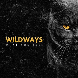 Wildways - What You Feel Lyrics