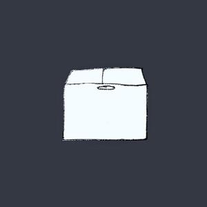 John Camara - Cardboard Box