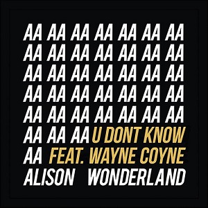 Alison Wonderland - U Don't Know Lyrics (Feat Wayne Coyne)