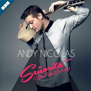 Andy Nicolas - ing